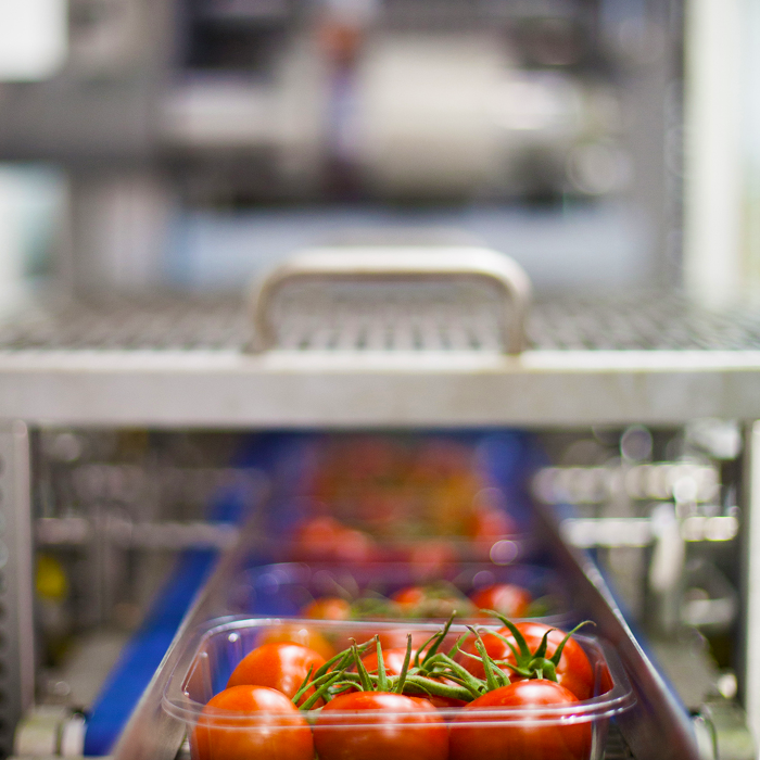 Packaging Automation Top Seal Machine Packaging Trays of Tomatoes