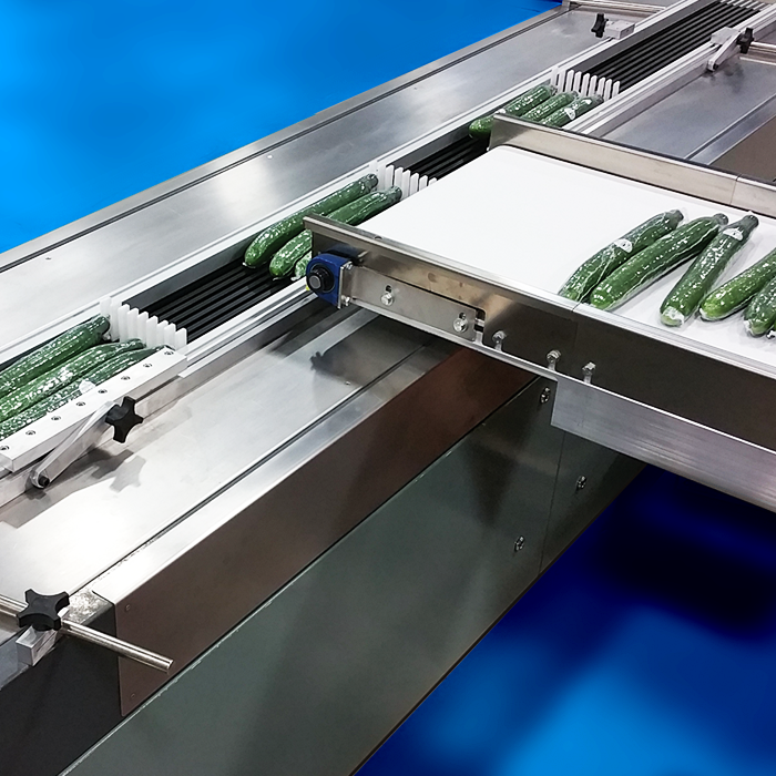 Crawford Packaging Pack Flight Conveyor System with Shrink Wrapped Cucumbers