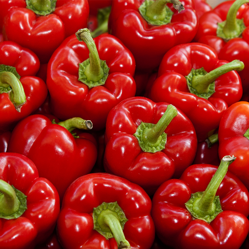 red bell peppers in shipping container