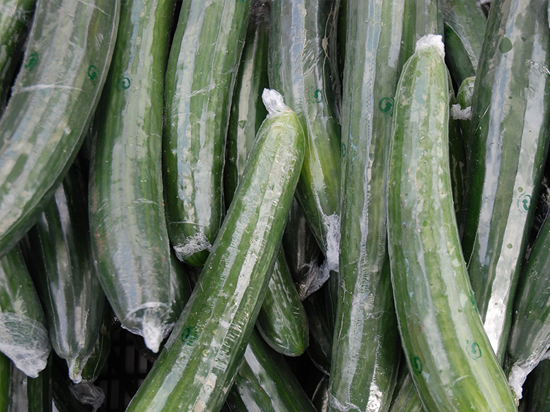 english cucumbers wrapped in clear shrink wrap packaging