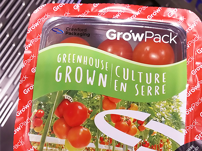 cherry tomatoes packed in growpack top seal film with red and green colours