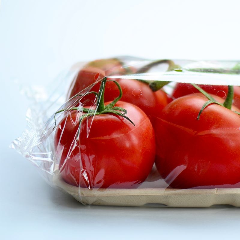 tomatoes packaged on fibre tray with bopp flow wrap film on white background