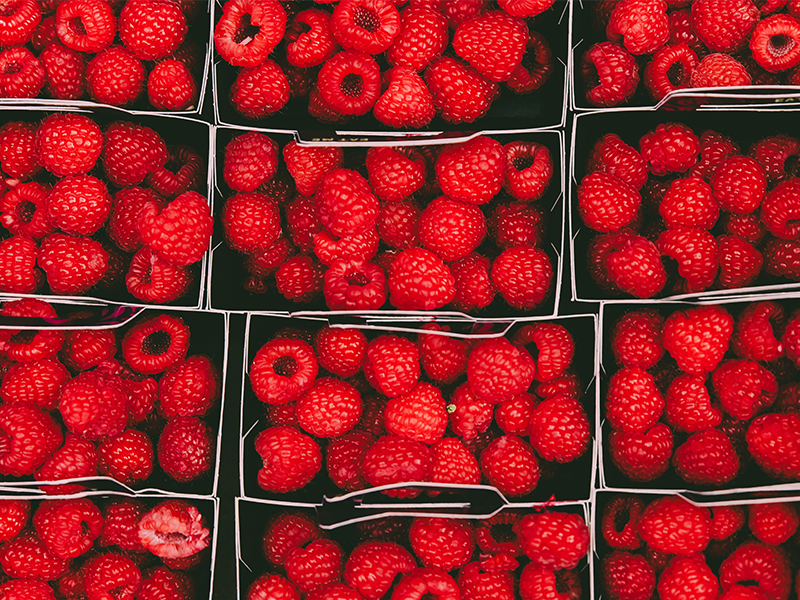 red raspberries in paper cardboard packaging designed packs