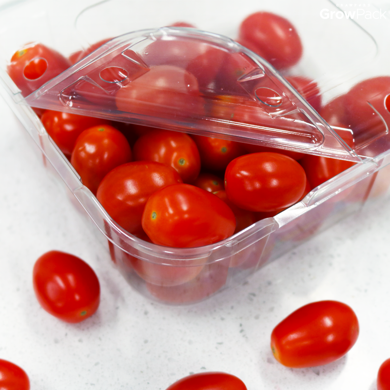 cherry tomatoes in growpack snack-pack clamshell packaging