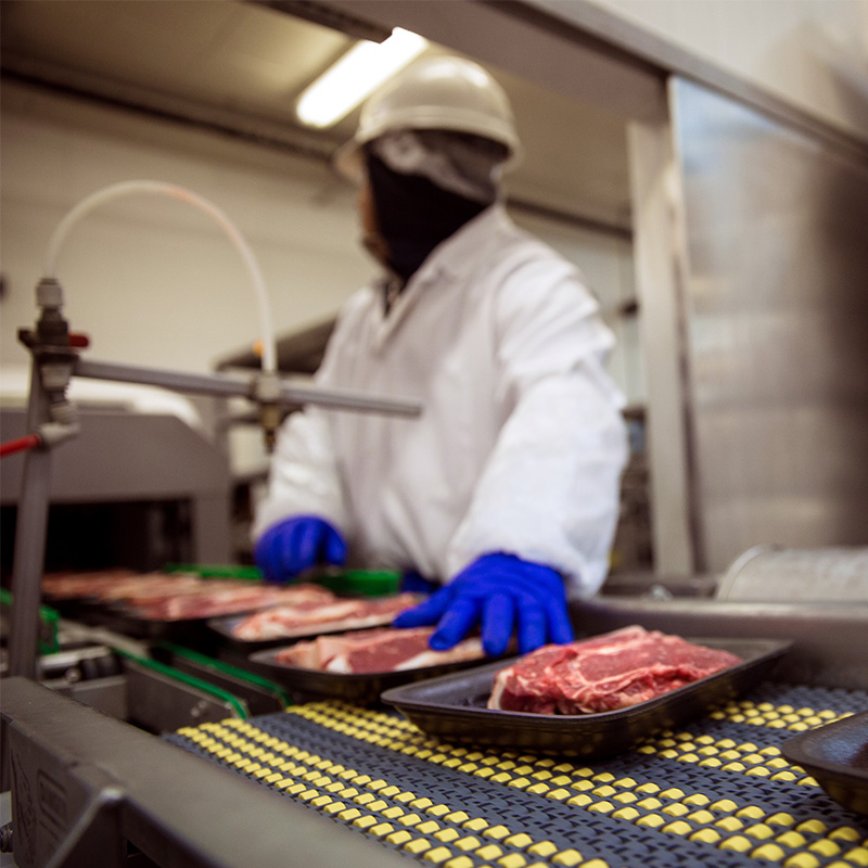 meat trays on conveyor in food processing facility