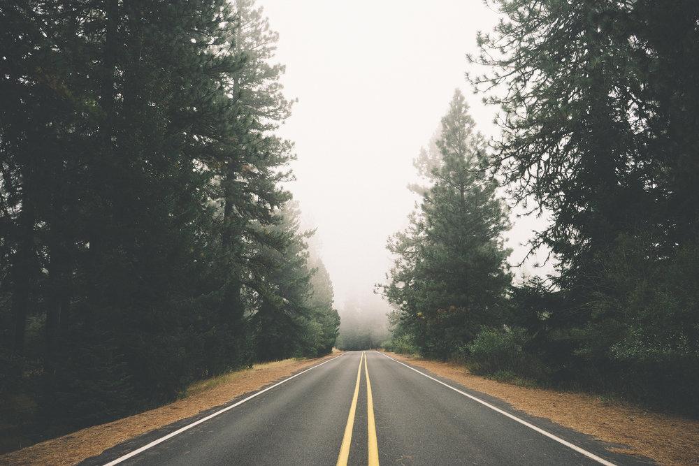 Drew McCutchen Pleiades Press Issue 38.2 The Falling Out Foggy Road.png.jpg