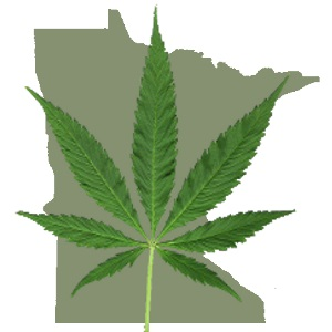 Minnesota - In 2014, Governor Mark Dayton signed into law SF 2470 to develop the Minnesota Medical Cannabis Program,allowing seriously ill Minnesotans to use medical cannabis to treat certain qualified medical conditions.