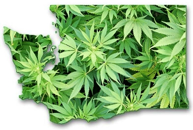 Washington - In 1998, voters approved Ballot Initiative I-692 to remove state penalties for qualifying patients with terminal or debilitating illnesses who, in the judgment of their physicians, may benefit from the medical use of marijuana.
