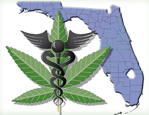 Florida - In 2014, voters approved Amendment 2 by 71.3% to allow for the medical use of marijuana for individuals with debilitating medical conditions as determined by a licensed Florida physician, allows caregivers to assist patients' medical use of marijuana and the Department of Health shall register and regulate centers that produce and distribute marijuana for medical purposes.
