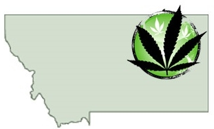 Montana - In 2004, voters approved Initiative 148 by 62%to remove punishment under state law for qualifying patients, physicians and health care professionals, personal caregivers for patients, and establish a registration program to allow qualified patients and caregivers access to medical cannabis for qualified medical conditions.