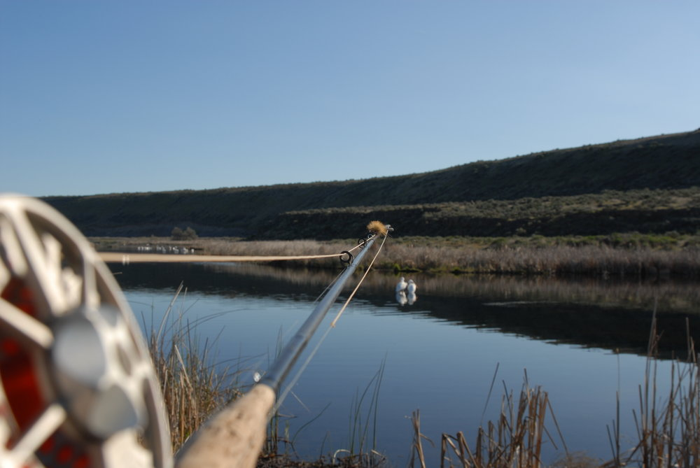 Rocky Ford Spring Creek