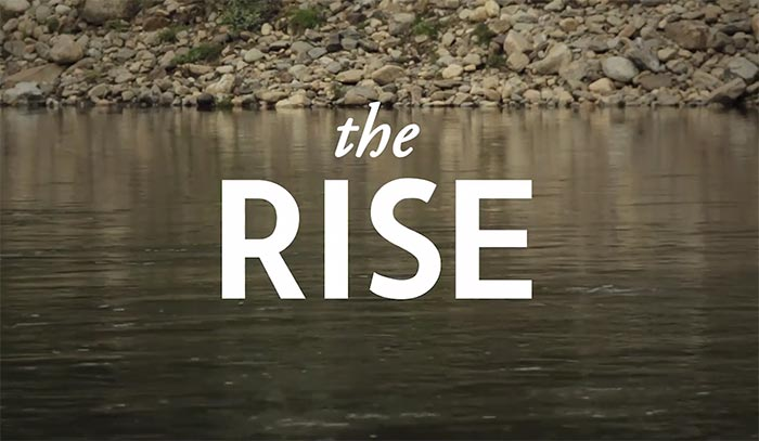 The Rise.jpg