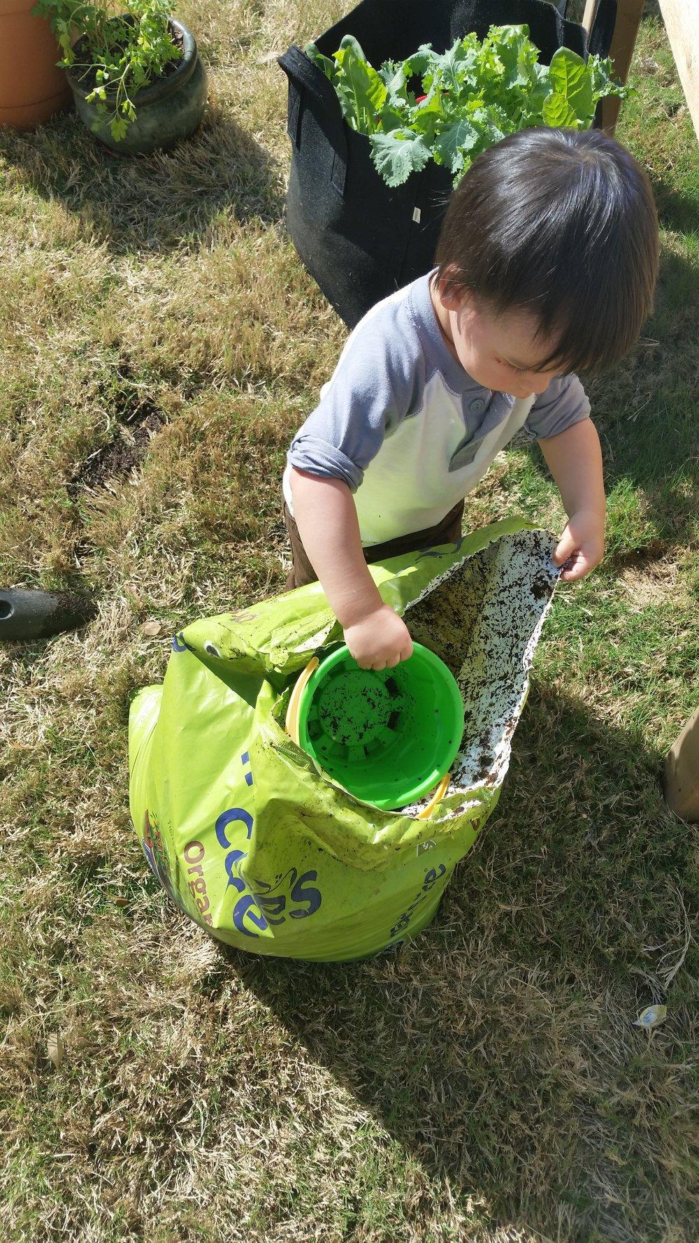 Ezra gathering some dirt