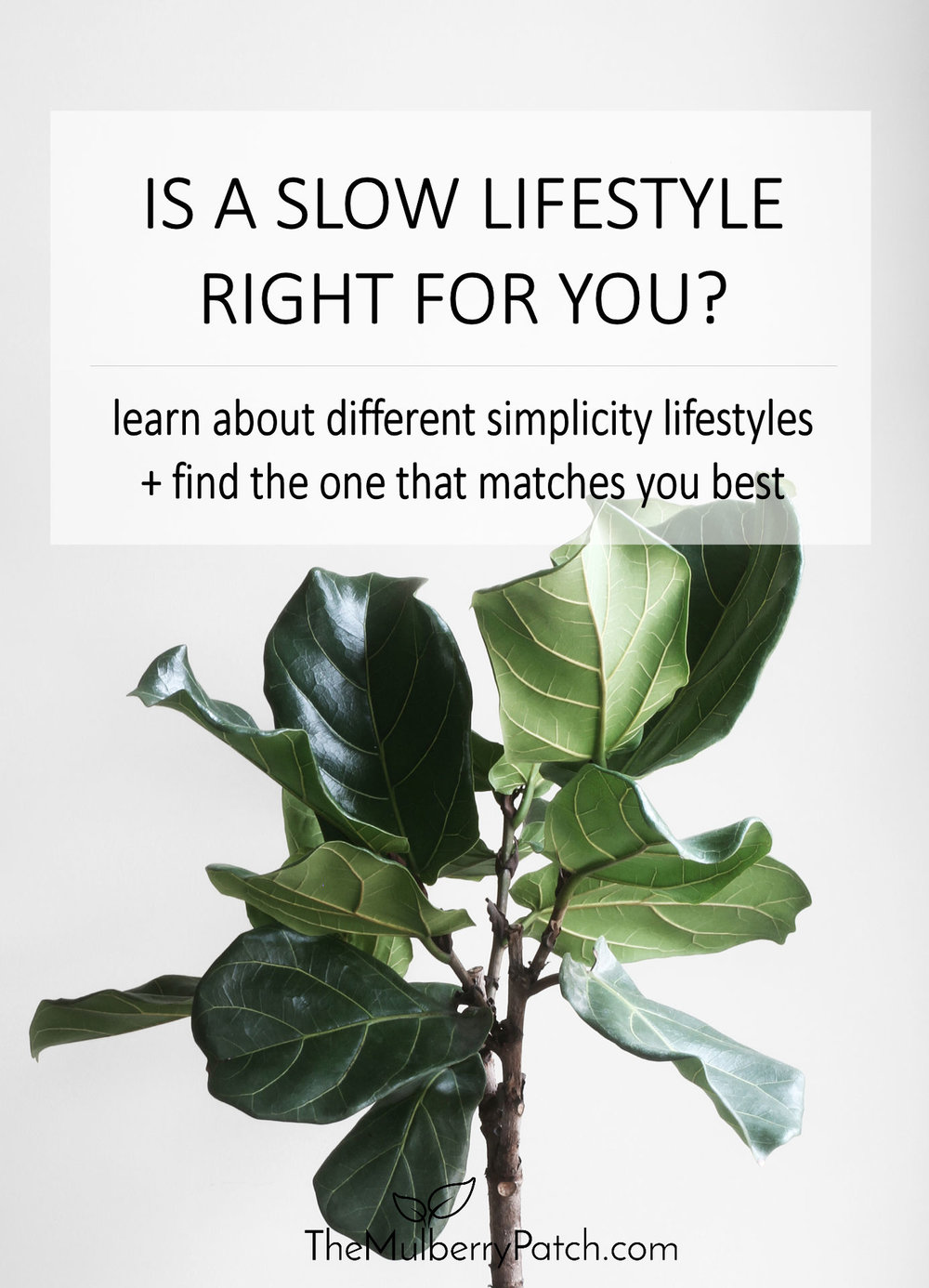 Is slow living right for you