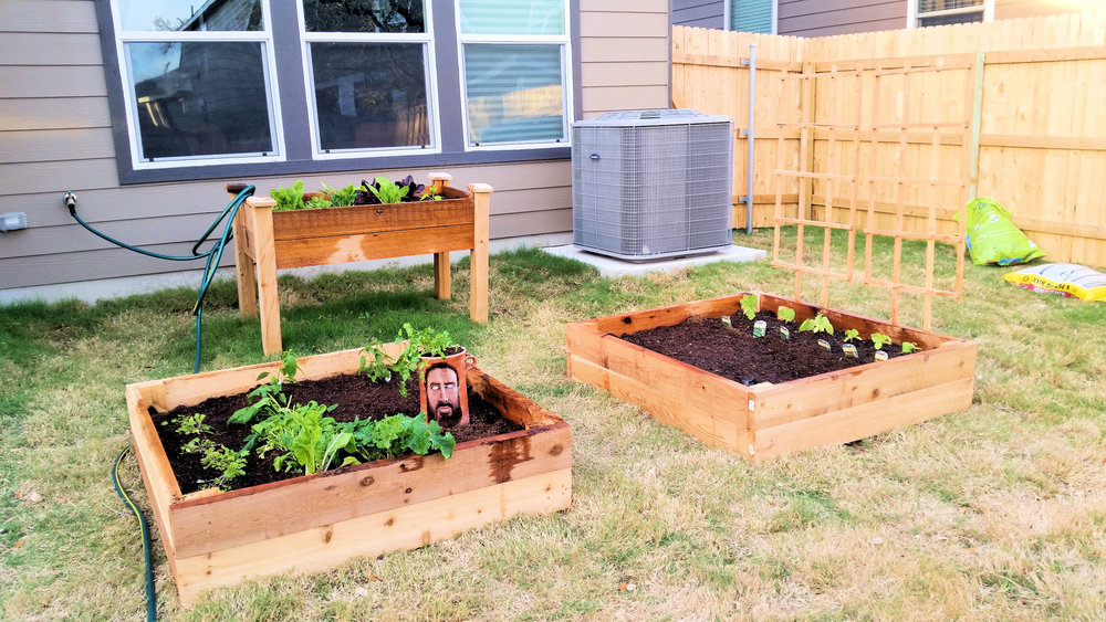 How to build a raised bed garden - for beginners, by beginners