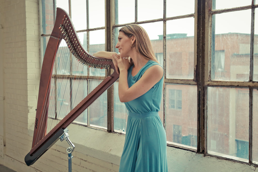 photo harpe électrique:cadbury.jpg