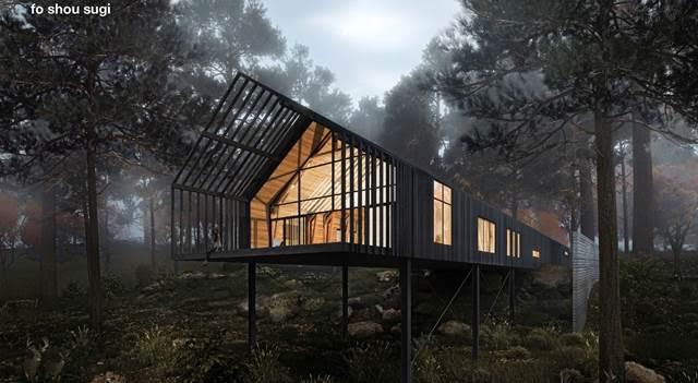 PUNCH Architects - fo shou sugi.jpg