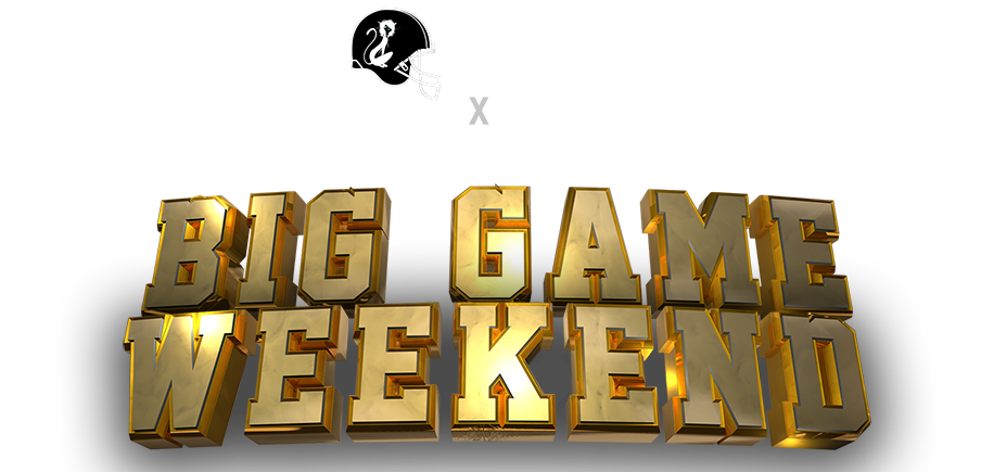 Big Game Logo-01-904.png