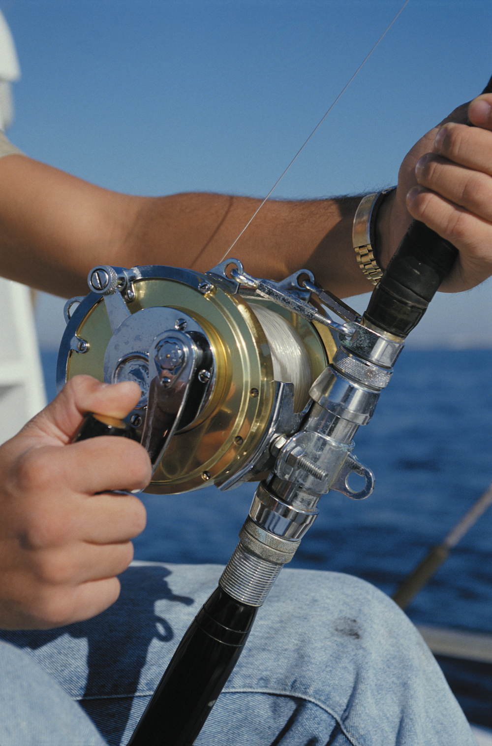 fishing reel and fishing line image