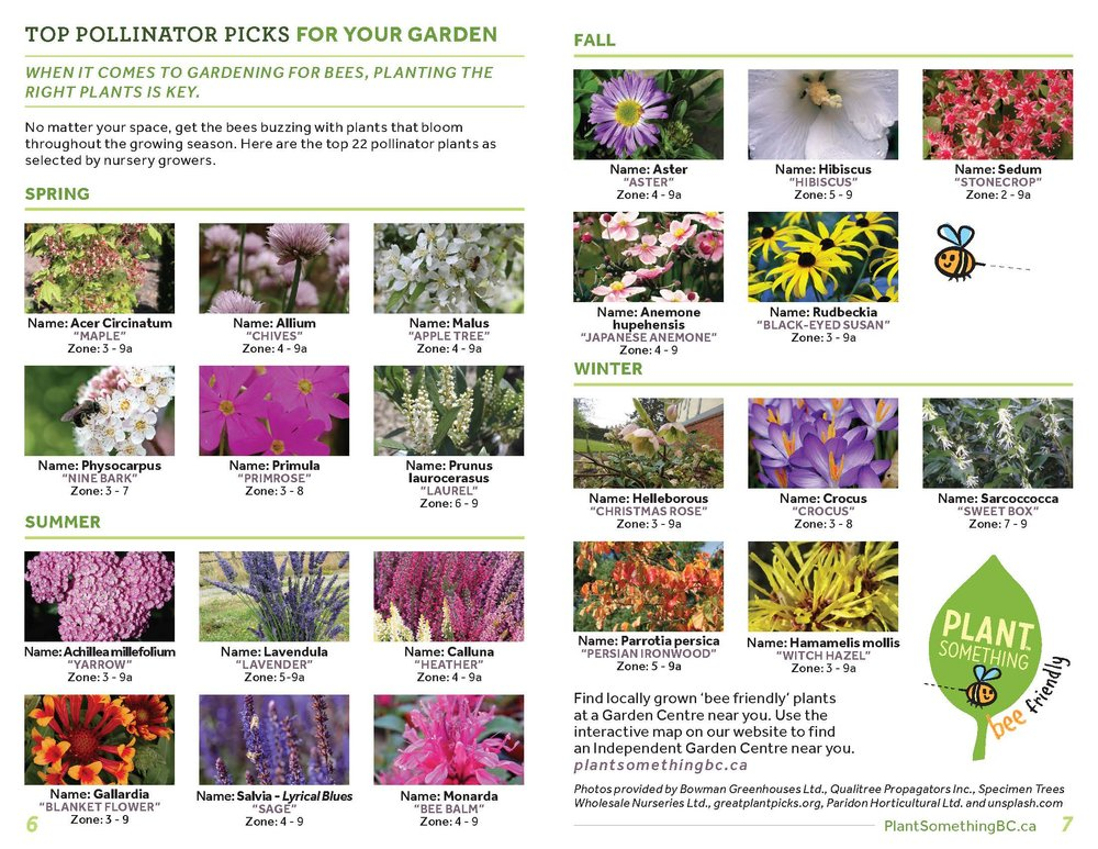 BCLNA_GardenWise_Booklet_FA_ReaderSpreads_Page_04.jpg