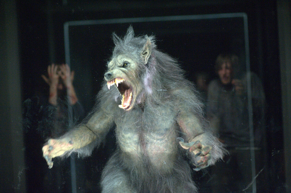 WEREWOLF - CABIN IN THE WOODS