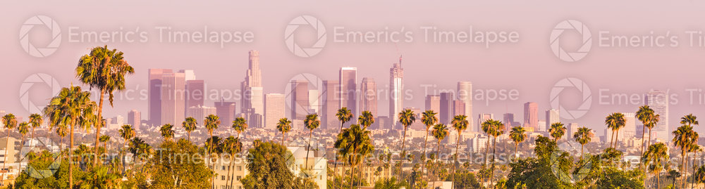 Downtown Los Angeles Palm Trees Sunset Panorama
