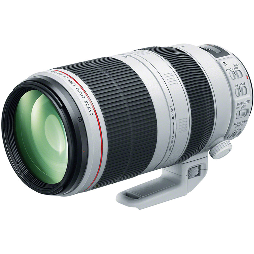 Canon 100-400 Mark II