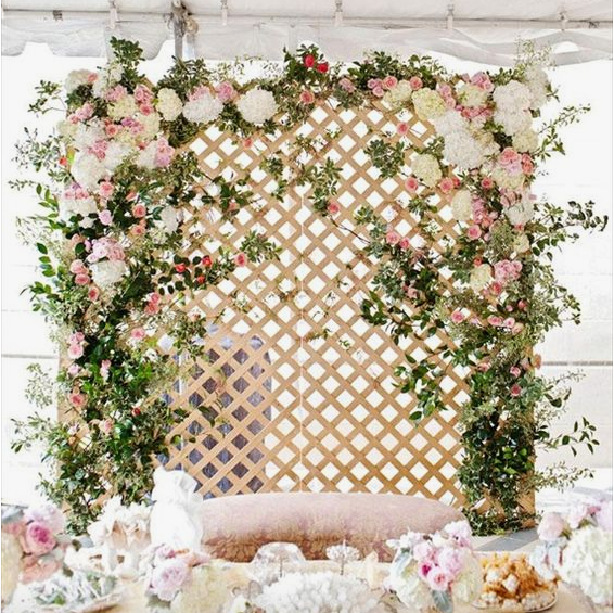 Customized Backdrop sample photo found on Pinterest