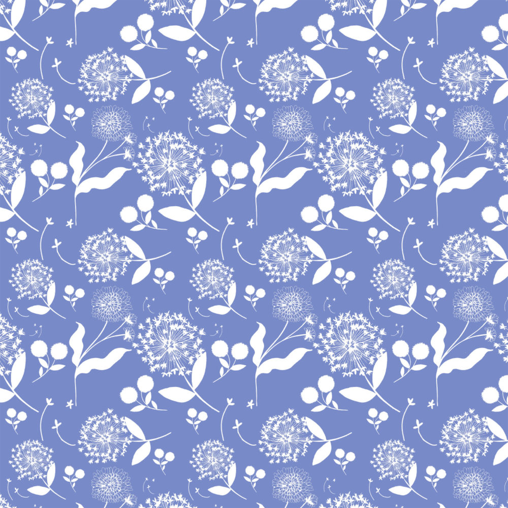 dandelion blue.jpg