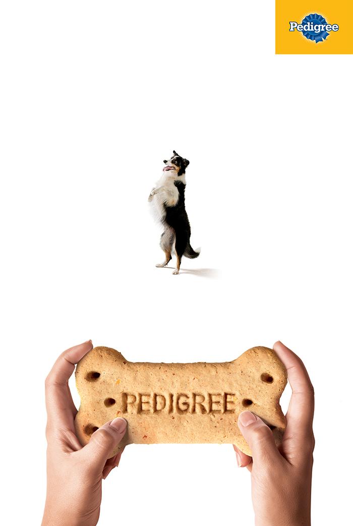 Pedigree_Joystick 2.jpg
