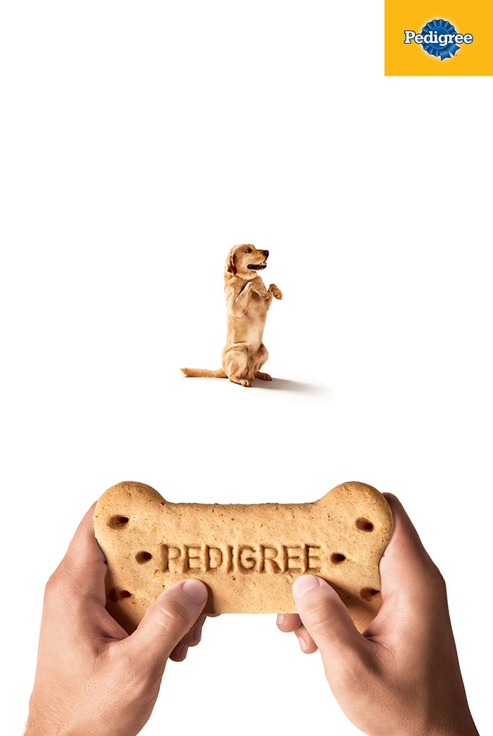 Pedigree_Joystick 1.jpg