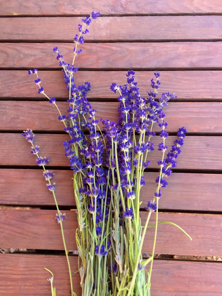 Garden lavender on table.jpg