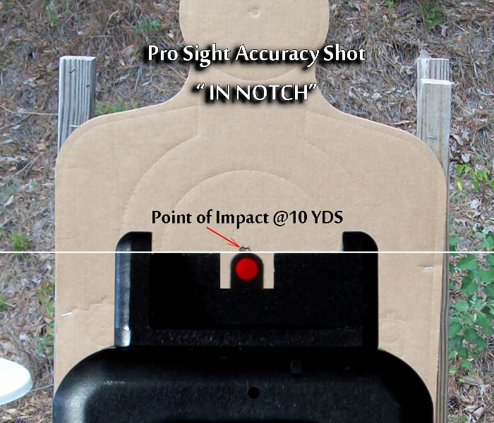 Pro Sight Accuracy Shot IN NOTCH (2).jpg