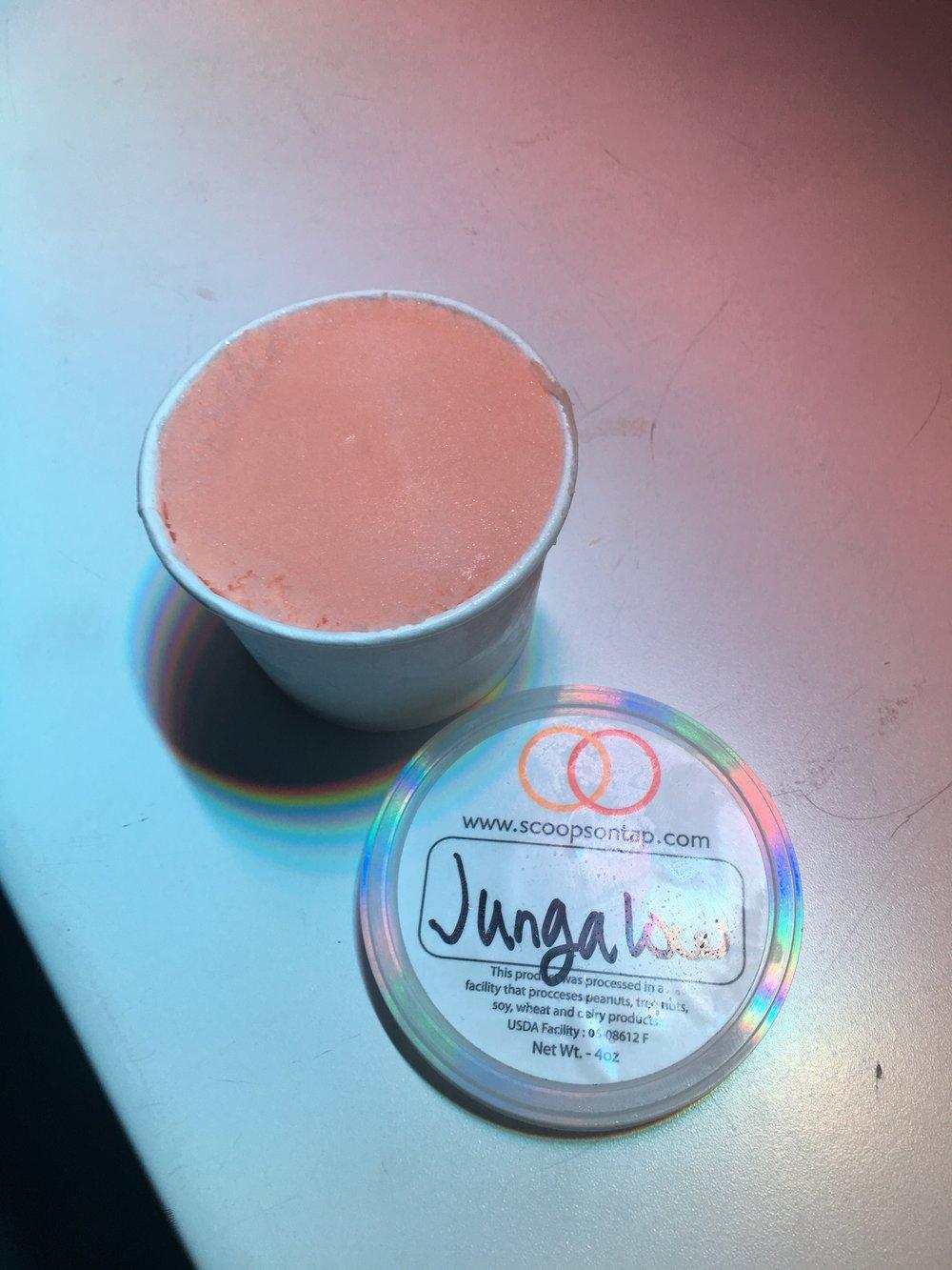 Jungalow Juice Guava Passion Fruit Sorbet