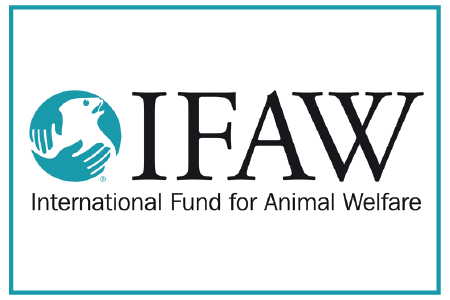 internation-fund-for-animal-welfare.png