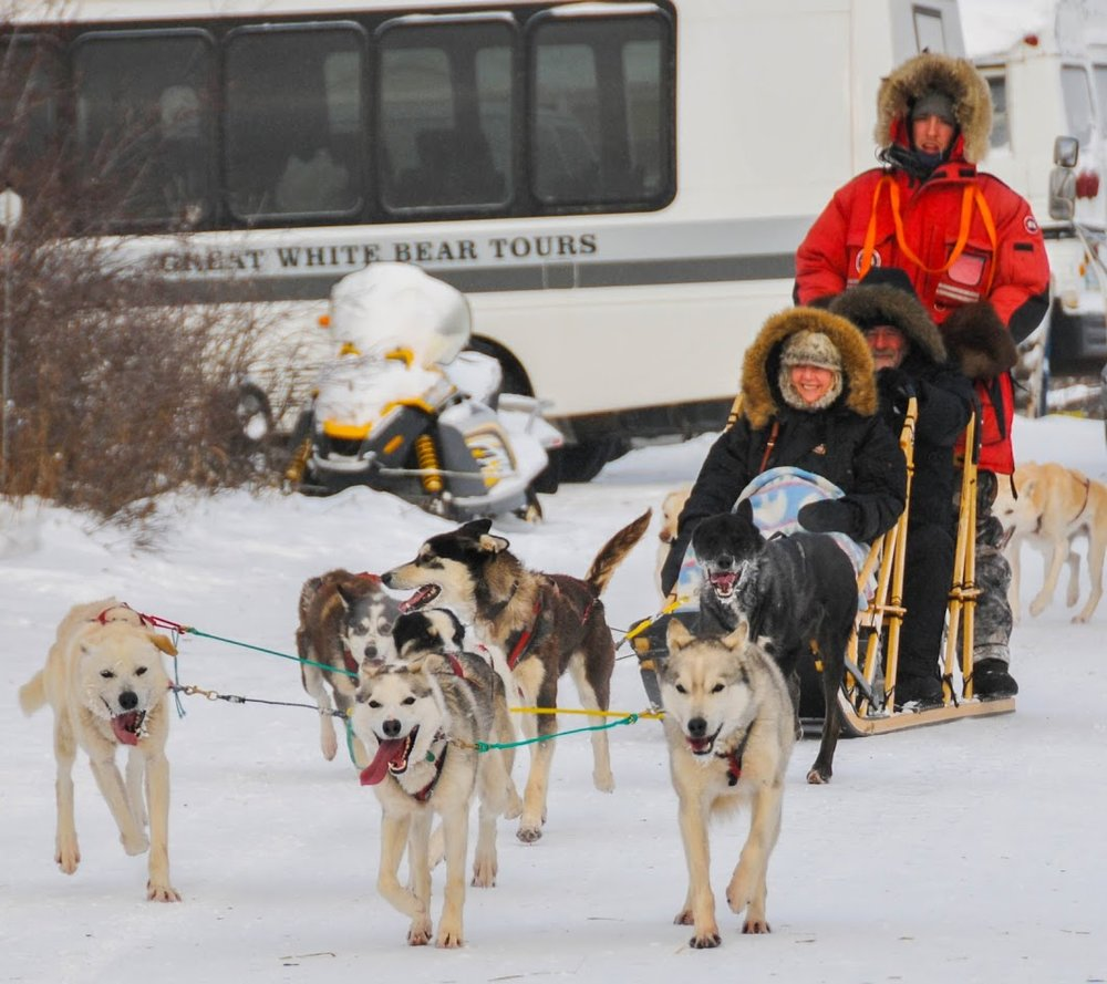 Churchill Dog Sled.jpg