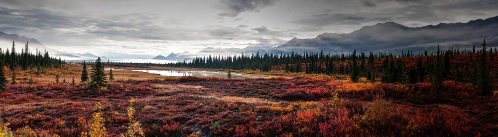 Alaskan Autumn