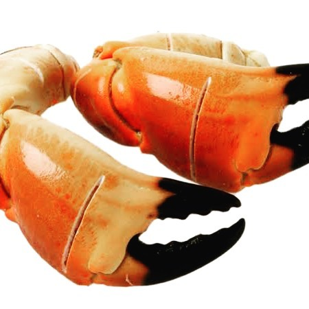 Few a few exciting changes to our menu tomorrow night for our big Crab Club dinner at Lamaro's! Jonah Crab claws. From Maine in the USA they are pre cut for ease of eating, with flakey and sweet flesh. Drinks package from @catalinasounds @coldstreambrewery Crab from @gambrellis Call Paul for last minute tables 96903737