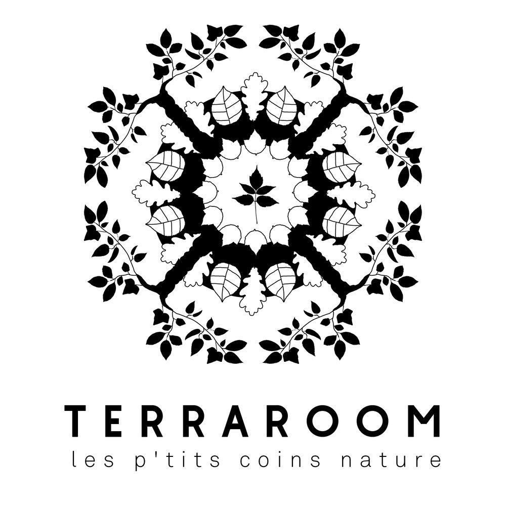 TERRAROOM_2.jpg