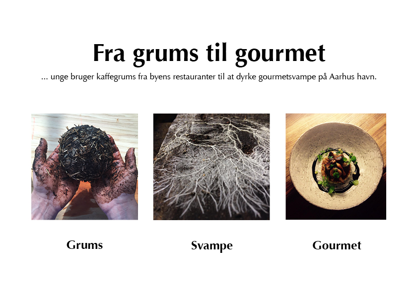 fra-grums-til-gourmet.jpg