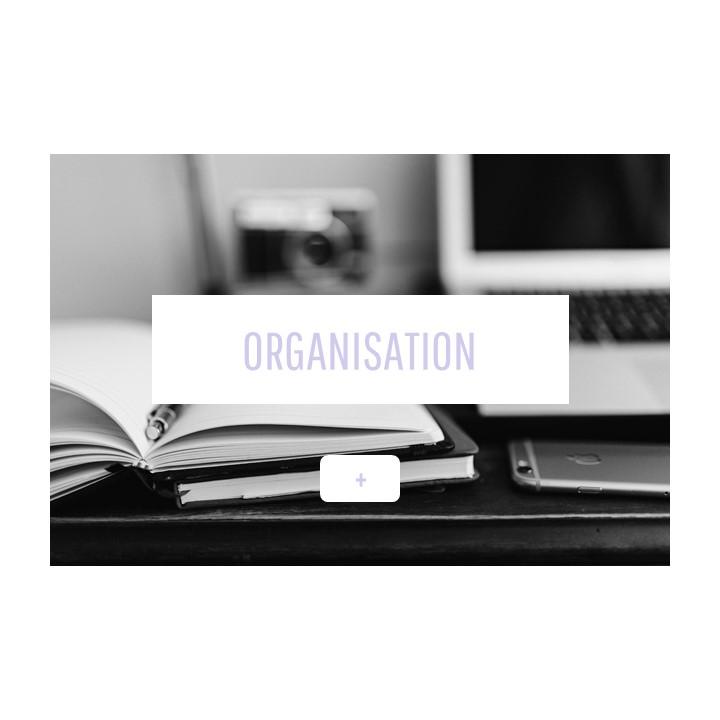 apasdelouves_organisation.JPG