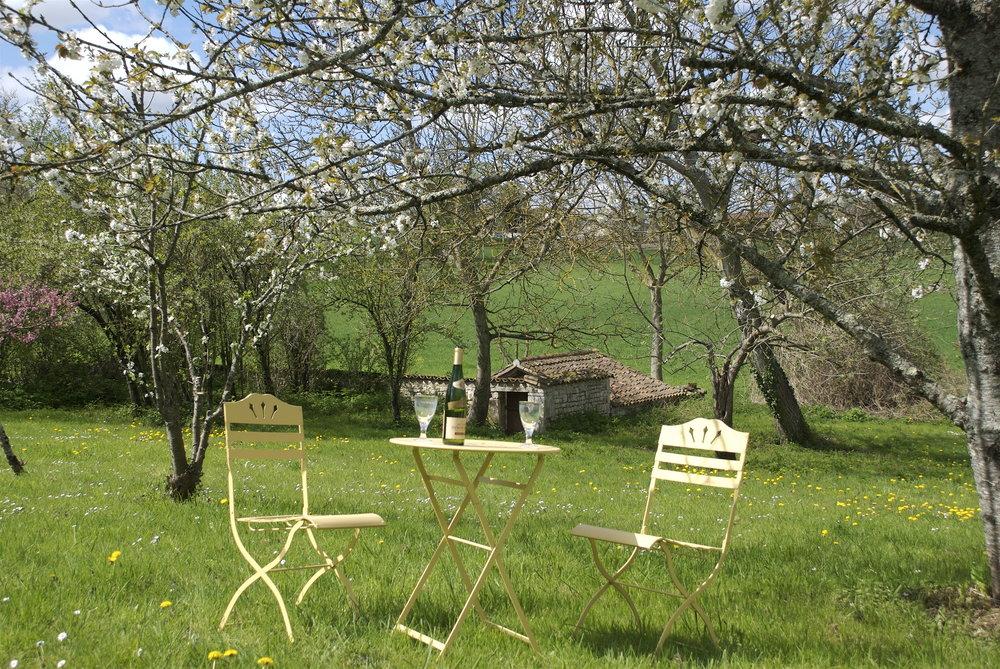 gite garden.jpg