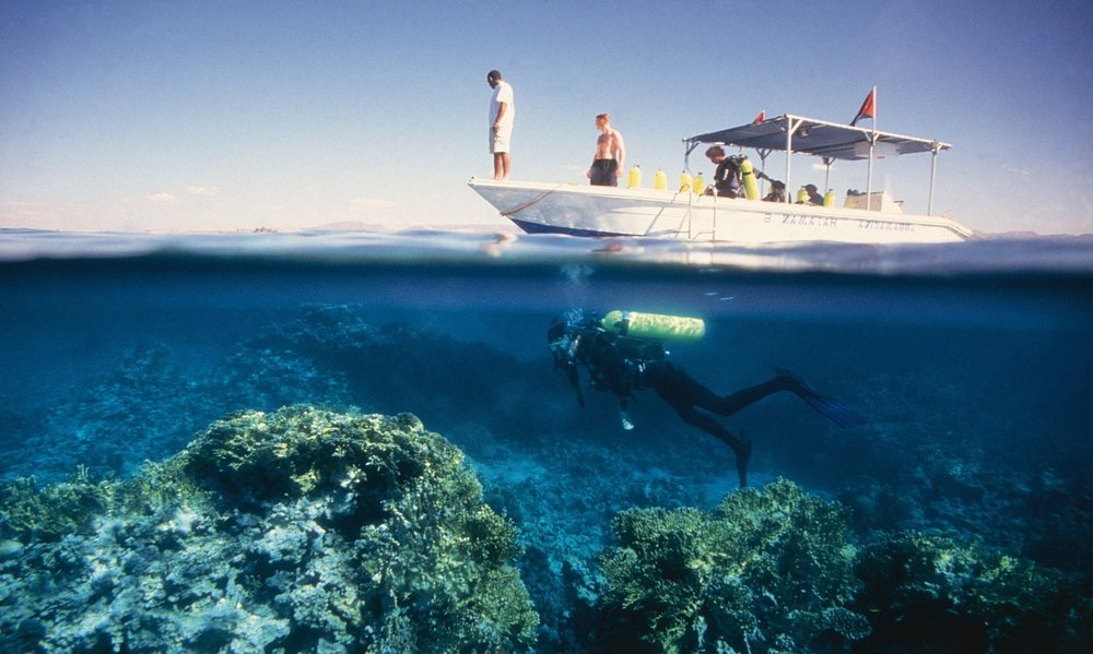 Snorkeling in the Red Sea.