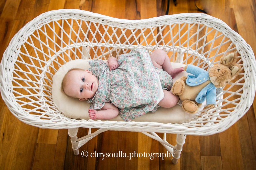 Baby Portrait Session