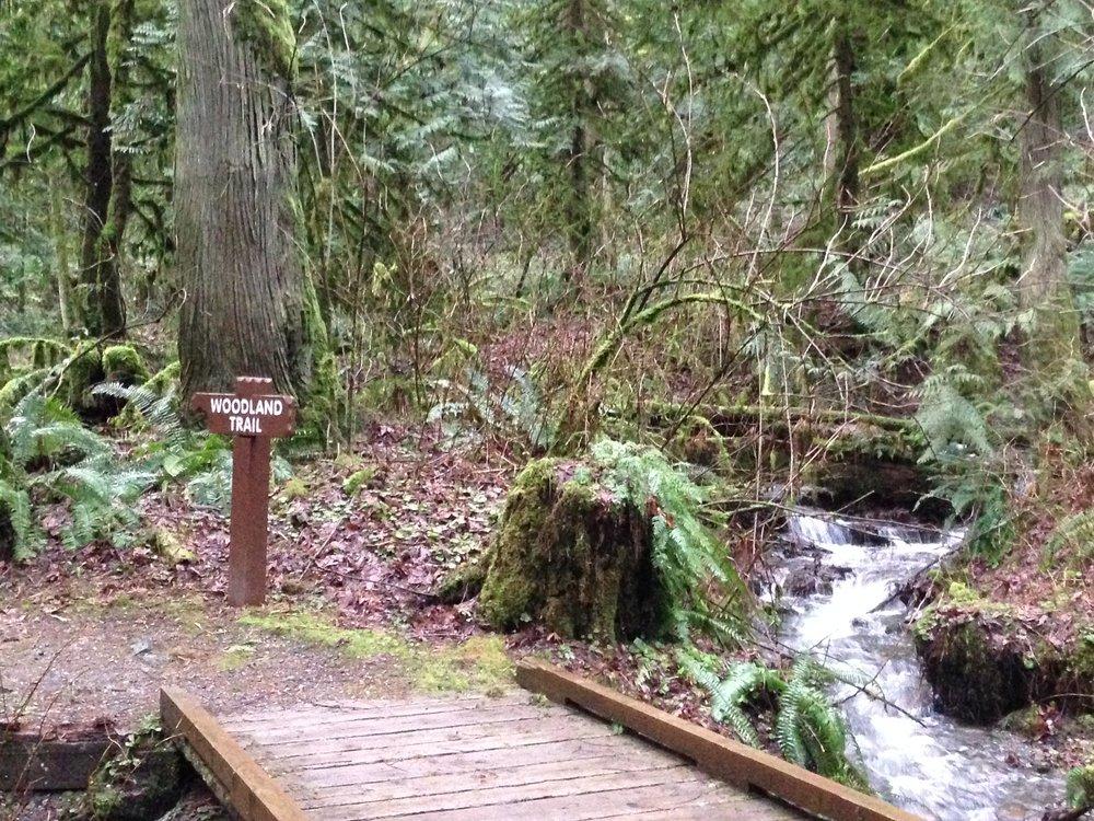 Bridal Falls Route
