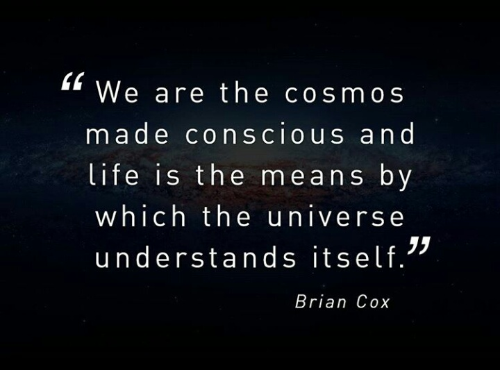 We are the cosmos made conscious and life is the means by which the universe understands itself - Brian Cox.jpg