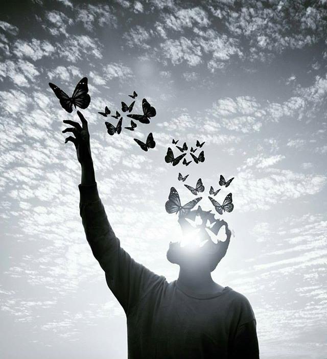 babel-moon-butterfly-man.jpg