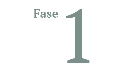 FASE1.jpg