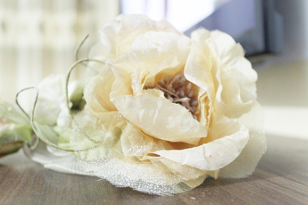 flower-1183530_1920.jpg