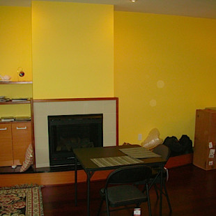 Antos_fireplace-before-310x310.jpg